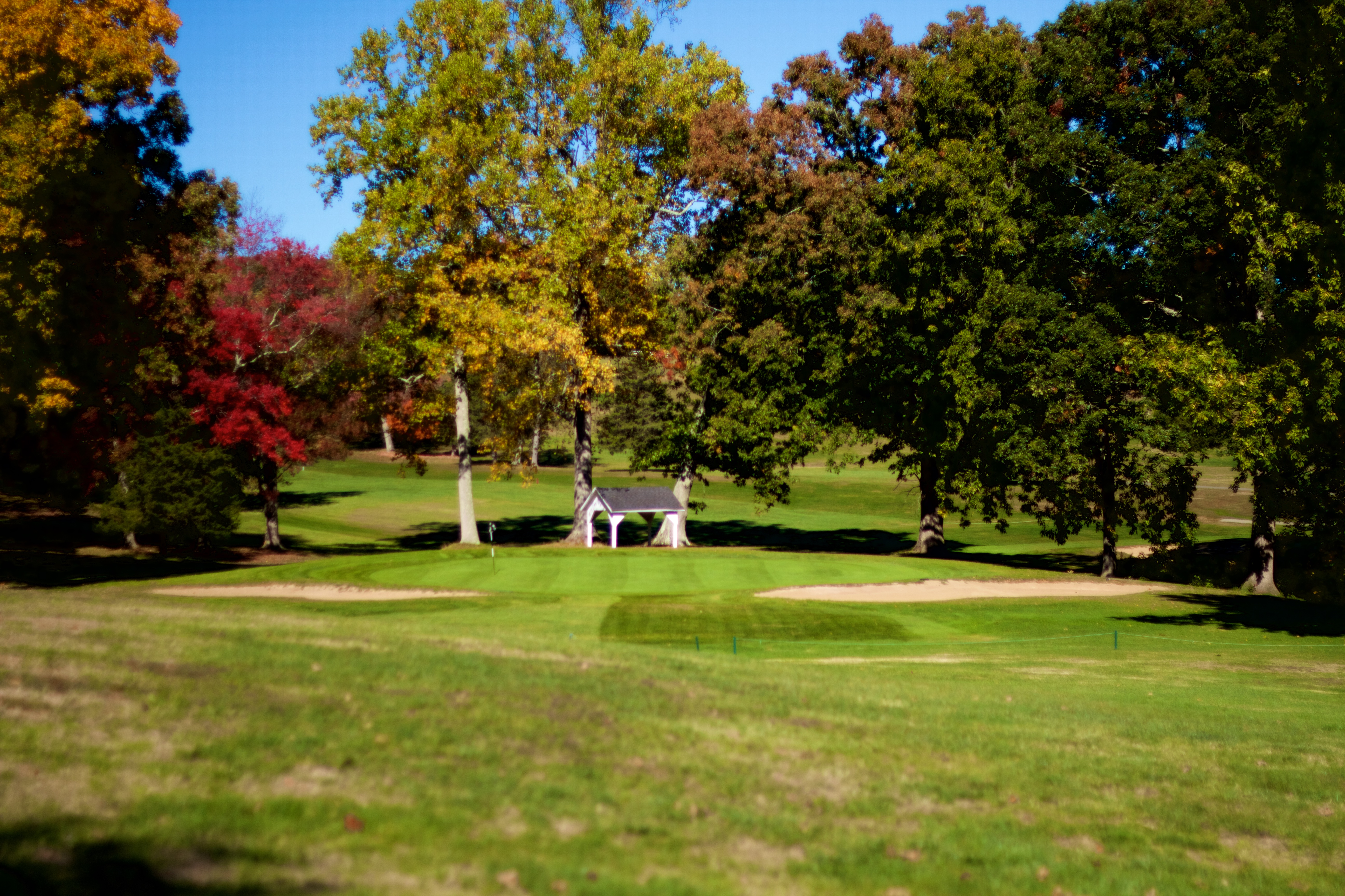 12++ Black birch golf course auction info